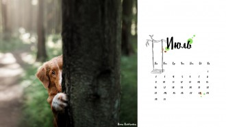 Календарь_Soul sisters_1050
